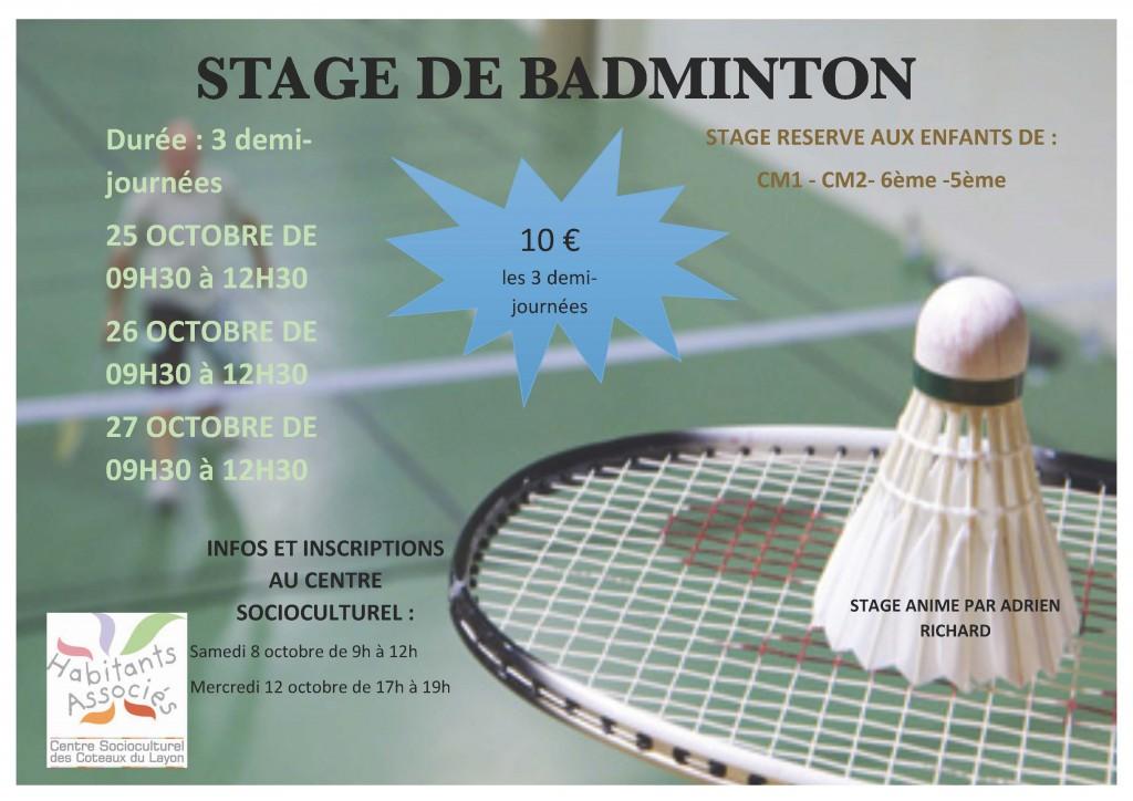 stage-badminton